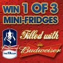 Surveys.co.uk - Win 1 of 3 Budweiser Mini-Fridges Filled with Budweiser - UK