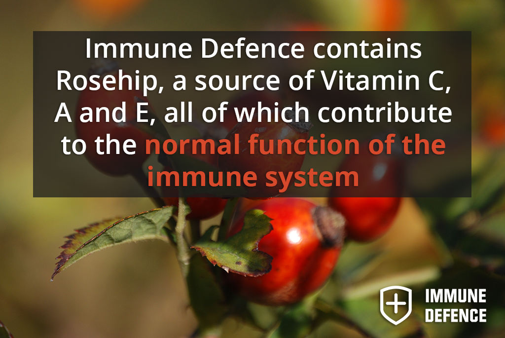 Boost Immune System with Vitamin C in Rosehips